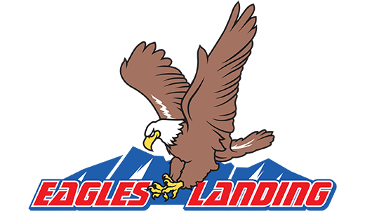 Read the eagle has landed online dating